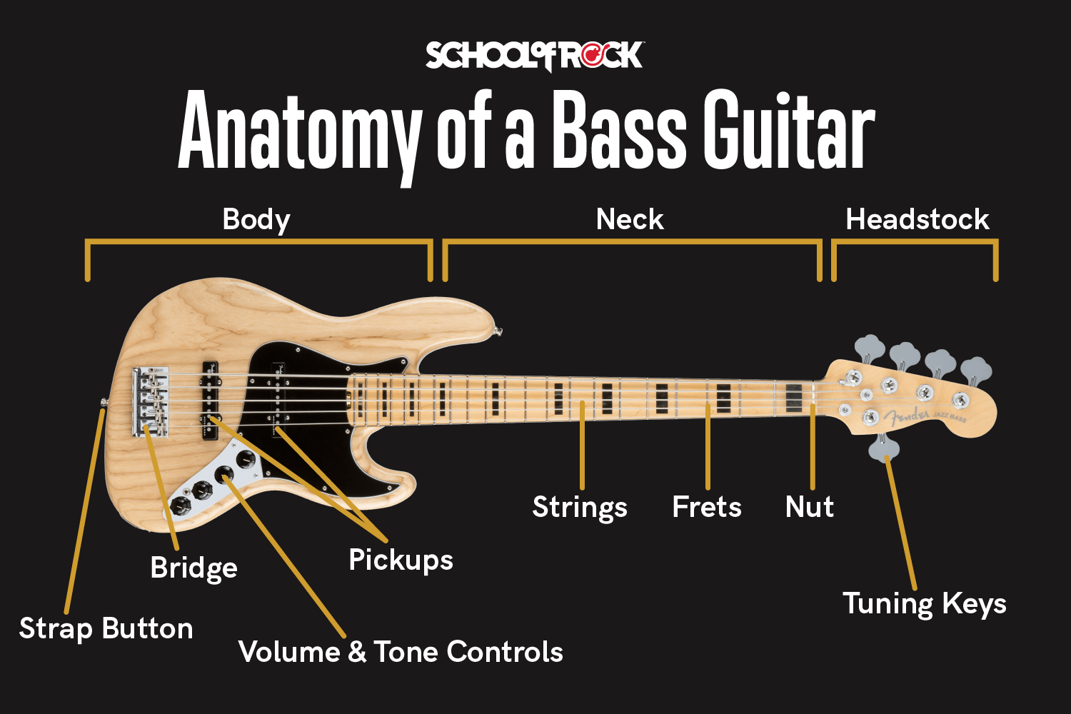 anatomy of bass guitar