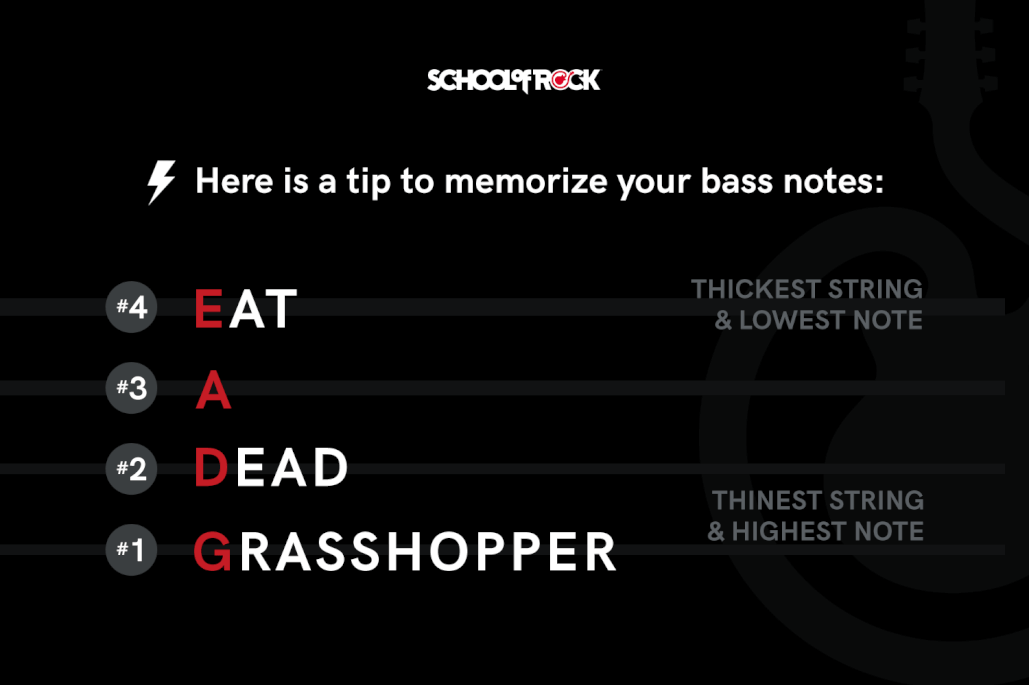 tip to memorize your bass notes Eat A Dead Grasshopper